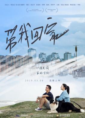 金光大道(中)