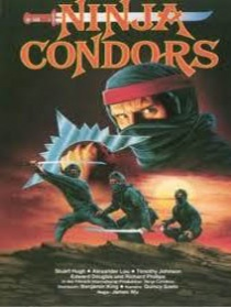 Ninjas, Condors 13