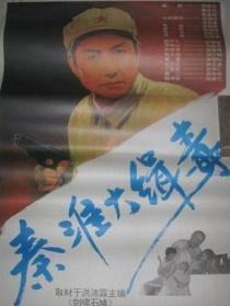 秦淮大缉毒