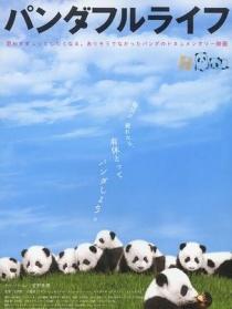 大熊猫的生活