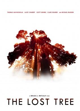 逝去的爱情树