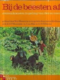 猿,超级猿