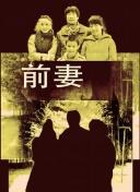 王璐丹主演的电影 丹主电影内含有磁芯片性