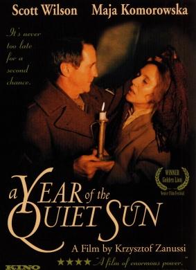寂静太阳年