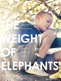 大象的重量
