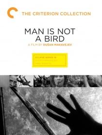 男人不是鸟
