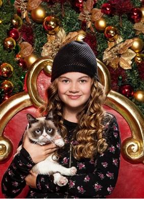 不爽猫最糟糕的圣诞节