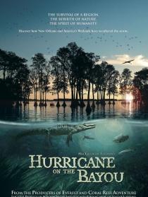 海湾的飓风