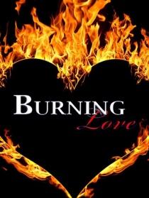 燃烧的爱情 第三季
