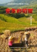 童年的稻田