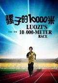 骡子的10000米