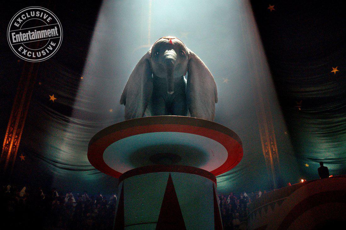3月观影指南:奥斯卡赢家开局 《惊奇队长》登场