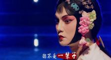 张国荣逝世16周年 章子怡:死亡从来不是生命的终点,遗忘才是