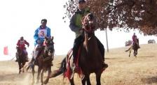 吳京內蒙古科右中旗比賽馬 膽子不是一般的大