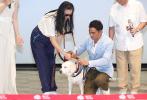7月18日晚,讲述导盲犬的电影《小Q》在京举行首映式。观影结束后,导演罗永昌,主演任达华、梁咏琪、杨采妮、罗仲谦等到场。在视障人士带着自己的导盲犬来到舞台上后,梁咏琪感动落泪,引来任达华贴心递纸巾。而杨采妮也在见证中国第一条导盲犬退役后,泪洒现场,场面感人。