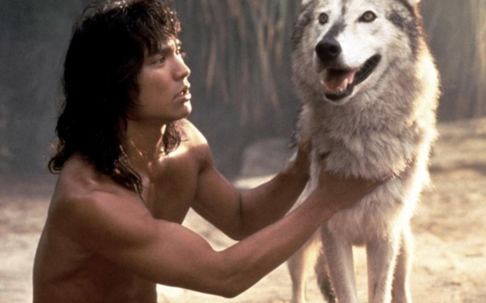 """你看过国产""""真狼、羊、猪版""""电影吗?"""