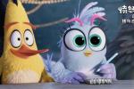 《愤怒的小鸟2》超前观影开启 笑果等你亲自检验