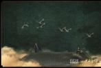 8月12日,刘涛携手周渝民拍摄的一组时尚芭莎×《大宋宫词》时尚大片曝光。古色古香的画面质复古悠然让人眼前一亮,服饰与眉眼之间更添国风韵味,将东方美含蓄的韵味和无处不在的感染力全部捕捉在镜头里。