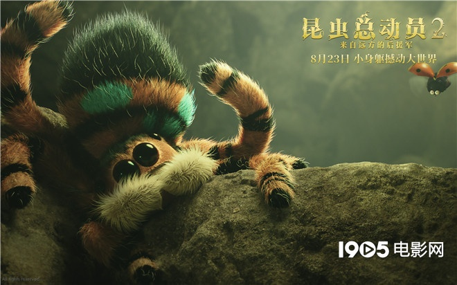 《昆虫总动员2》推广曲上线 8.23化身最萌冒险家