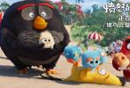 """由图鲁普·范·奥尔曼执导,杰森·苏戴奇斯、乔什·加德、莱斯莉·琼斯、比尔·哈德尔、瑞秋·布鲁姆等原版配音的爆笑动作动画电影《愤怒的小鸟2》今日全国公映!影片今日发布了""""猪鸟秘密会议""""片段,老冤家猪鸟联手出击带来的欢乐冒险之旅,被观众赞许为""""笑到缺氧,是暑期里最欢乐的观影体验。""""电影《愤怒的小鸟2》正在全国热映中。"""