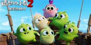 《愤怒的小鸟2》爆笑热映 这些彩蛋你集齐了吗?