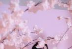 8月22日,吴磊拍摄的一组古风大片释出。画面中,吴磊一袭中式长衣,外搭烟青色纱质外衫立于桃花树下,折扇轻摇,眉目含情,仙气十足。
