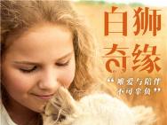 """来""""撸狮""""!《白狮奇缘》曝剧照 狮乐园温暖升级"""