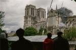 巴黎圣母院火灾将拍剧!或采用多角色视角讲述