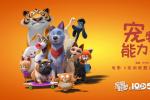 爆笑来袭!《宠物联盟》发布推广曲 女团SING献唱