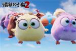 《愤怒的小鸟2》曝制作特辑 爆笑动画合家欢首选