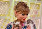 """11月7日,泰勒·斯威夫特(霉霉)通过社交账号晒照,并配文称:""""我可以把他们带走吗?#20426;?#29031;片中,霉霉化着精致的蓝色眼妆,红唇诱人,手中抱着两只奶猫,霉霉一脸宠溺地看着两个小家伙,看来这两只奶猫让身为猫奴的霉霉难以把持。"""