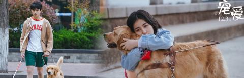 徐峥监制《宠爱》首曝特辑 吴磊张子枫与狗结缘