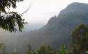 周而复始生生不息 跨越山海寻味斯里兰卡的野性之美