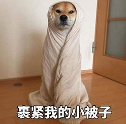 早报超有料丨《受益人》首周末票房破亿 《宠爱》吴磊张子枫与狗依偎