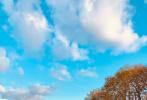 """11月11日,蔡徐坤通过微博晒出一组近照,并配文称:""""明信片4.0。""""照片中,蔡徐坤顶着一头金发,驼色大衣内搭黑色高领衫,身后是如画的秋色美景。"""