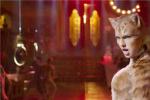 超经典!泰勒·斯威夫特为电影版《猫》演唱新歌
