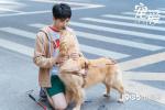 """徐峥监制《宠爱》曝""""守护""""预告 张子枫陪伴吴磊"""