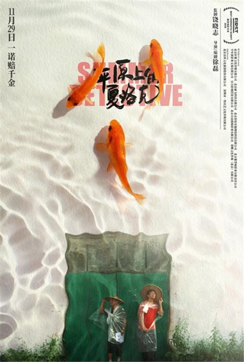 《平原上的夏洛克》导演徐磊:在生活中成为导演