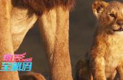 电影全解码:《狮子王》动画翻拍电影的得与失
