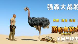 """《勇敢者游戏2:再战巅峰》""""鸵鸟大战""""片段曝光"""