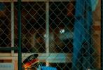 12月11日,胡歌联手刁亦男导演共同呈现的2019最美表演,《南方车站的聚会》番外彩蛋《逃亡者的前世今生》剧照曝光。