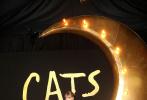 当地时间12月16日,美国纽约,泰勒·斯威夫特出席电影《猫》首映礼。红毯上童话般的电影海报,还有巨星弯月装饰,让首映礼充满梦幻色彩。一身红色摸胸刺绣拖尾华服的霉霉,盘起金色长发,红唇妆容更显精致;霉霉举手投足间尽显优雅、华贵。