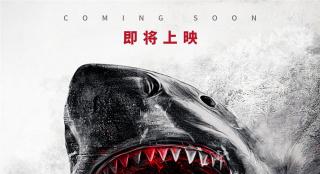 《鲨海逃生》发布先导预告 上演47米深潜惊魂危机