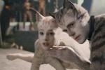 票房口碑均不佳! 电影版《猫》撤掉奥斯卡宣传