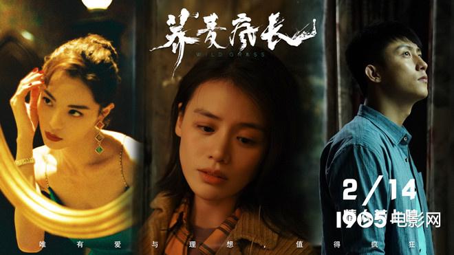 《荞麦疯长》提档至2.14 马思纯黄景瑜为爱疯狂
