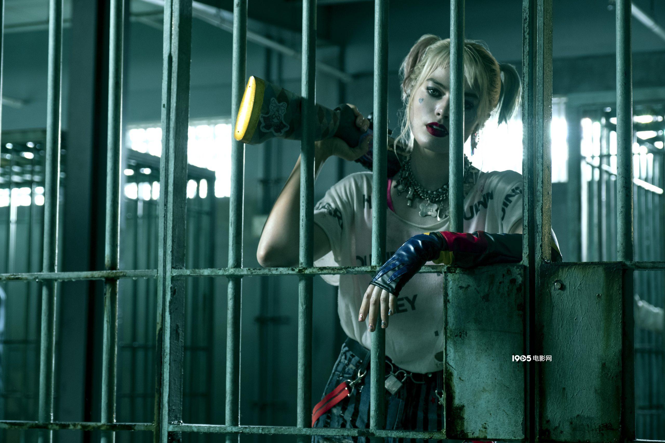 漫威宇宙第三阶段顺序 DC《猛禽小队》公布海量剧照 全面展现小丑女生活