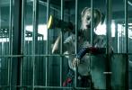 DC電影《猛禽小隊和哈莉·奎茵》近日公布了海量劇照,全方位展現了小丑女的生活。從劇照來看,小丑女在影片中是一個多變、無法預料的角色。即便是犯罪,她也顯得楚楚可憐,非常無辜。