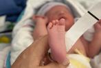 2月4日,43岁的好莱坞影星米拉·乔沃维奇通过社交账号晒照,宣布三胎产女的喜讯。米拉穿着病号服,连上化着淡妆正在给小女儿哺乳。她还晒出了新生儿与家人们的合影,一家五口颜值颇高。