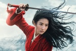 《花木兰》摄影师大赞刘亦菲:亲力亲为非常专业