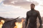 电影《黑豹2》确定开机时间 预计定档2022年5月